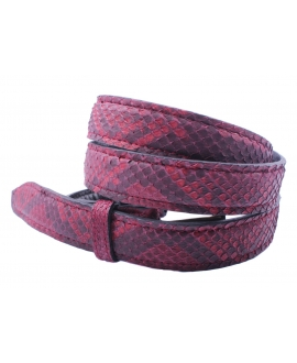 Little Python Belt