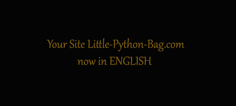 Little Python Bag in english